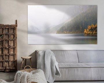 Een Bergmeer in de Mist van Coen Weesjes