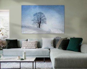 Winter delight van Maria Ismanah Schulze-Vorberg