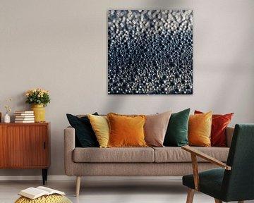 Waterdruppels (2) van Rob van der Pijll