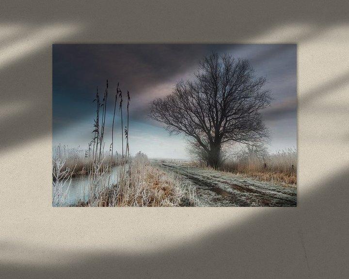 Sfeerimpressie: Landweg Bossche Broek van Ruud Peters