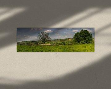 Twee bomen, Gulperberg van Maurice Hertog