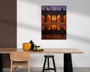 Enter the reflection van Fabian Bosman