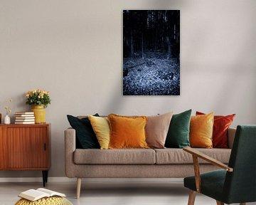 Donker nacht bos van Jan Brons