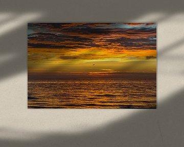 Golden sunset van Richard Steenvoorden