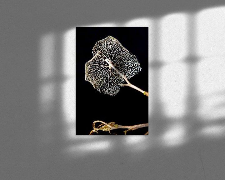 Sfeerimpressie: Fragiel skelet van bladnerven, vergankelijkheid van Rietje Bulthuis
