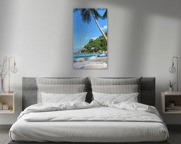 Paradis tropical sur Fotojeanique .