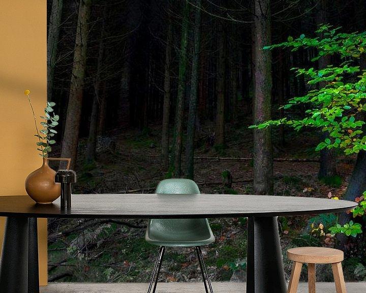 Sfeerimpressie behang: Donker bos, groen accent van Peter Bolman
