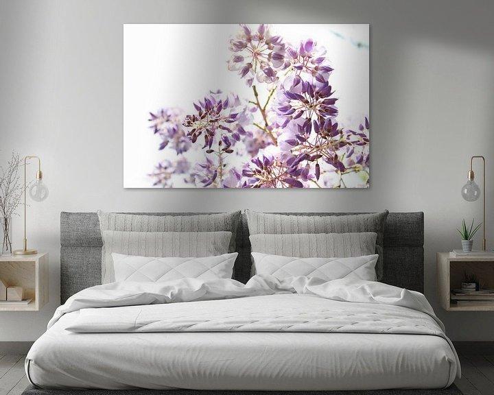Sfeerimpressie: Paarse Wisteria-bloemen van Fleur Halkema