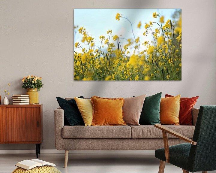 Sfeerimpressie: Weide vol gele bloemen van Fleur Halkema