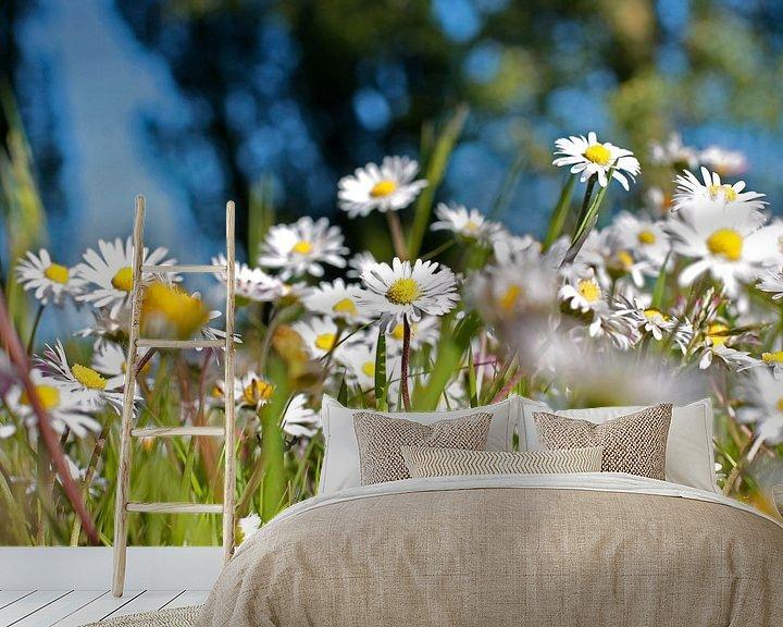 Sfeerimpressie behang: Een veld vol madeliefjes van Fleur Halkema