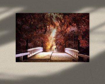 Over de brug van licht van Lars van de Goor