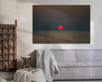 Zonsondergang met vogels von Richard Steenvoorden