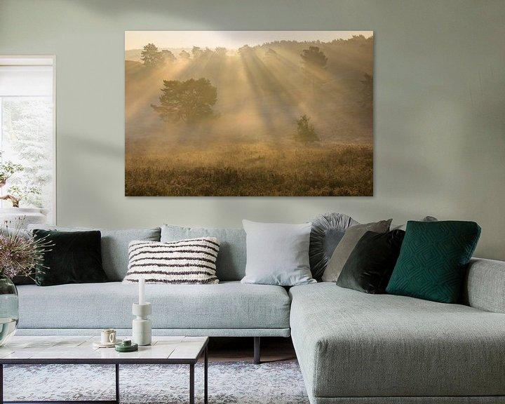 Sfeerimpressie: zonnestralen in de mist van Francois Debets