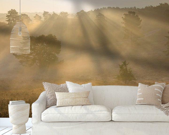 Sfeerimpressie behang: zonnestralen in de mist van Francois Debets