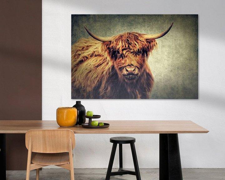 Sfeerimpressie: Highland Cattle van Angela Dölling
