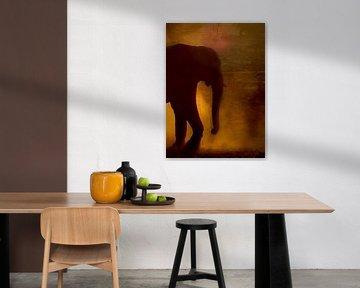 Jumbo Elefant Hintergrundbeleuchtung von Anita Loos