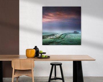 Foggy meadows van Ruud Peters