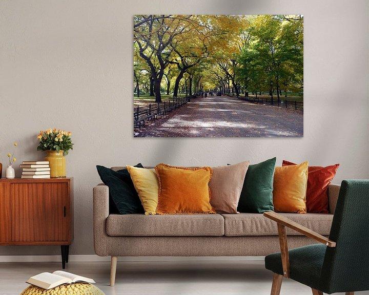 Sfeerimpressie: NewYork Central Park van Jeannine Van den Boer