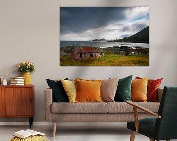 Lofoten Noorwegen van Erwin Stevens