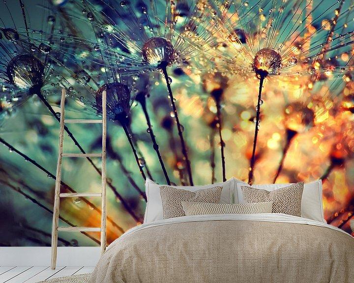 Beispiel fototapete: Pusteblume Tautropfen  von Julia Delgado