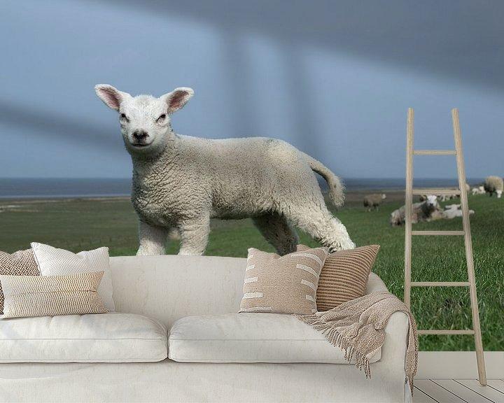 Beispiel fototapete: Staand lam op de dijk met de Waddenzee als achtergrond, lente in Friesland von Tim Groeneveld