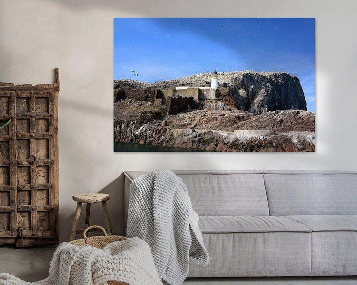 Sfeerimpressie: Northern Gannets on Bass Rock van Gisela Scheffbuch