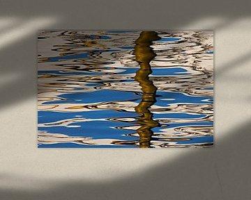 Reflectie in het water van Antwan Janssen