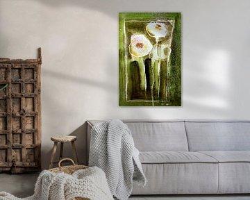 Weißer Mohn - abstrakt von Christine Nöhmeier