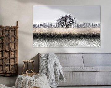 De winterboom van Ricardo Bouman