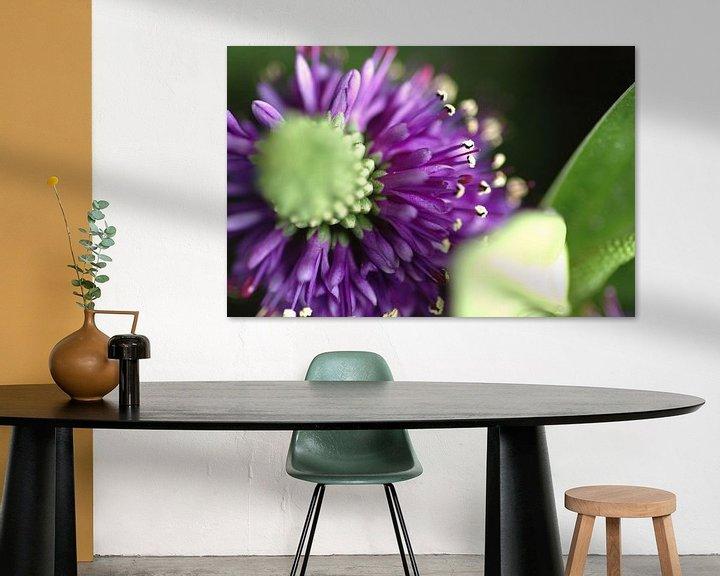 Beispiel: Paarse bloem von Agnes Meijer