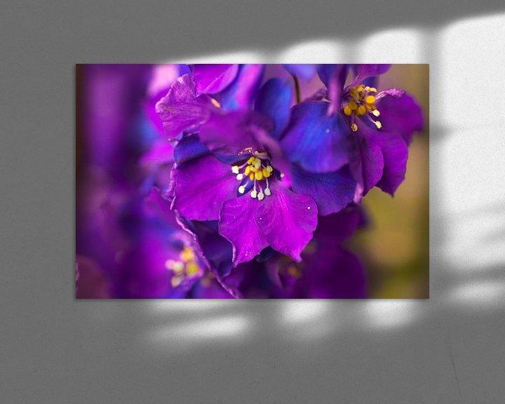 Beispiel: Bloem paars/blauw von Agnes Meijer