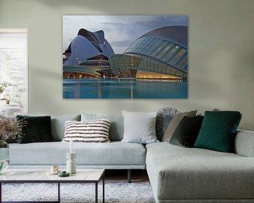 Valencia by Calatrava van Dave Lans