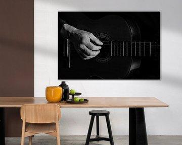 Gitarre von Jos Verhoeven