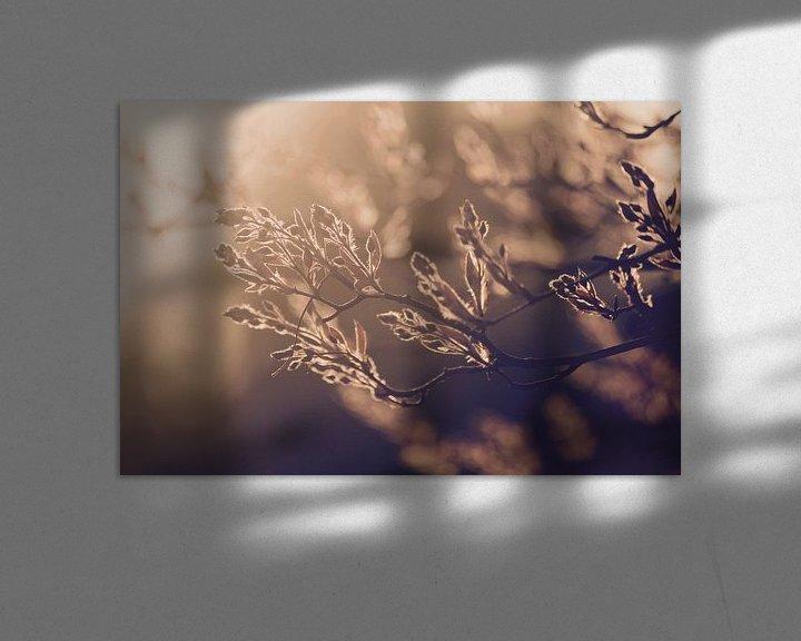 Sfeerimpressie: Lente! van Lisa-Valerie Gerritsen