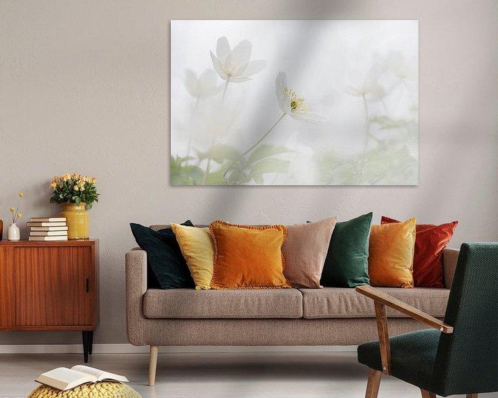 Sfeerimpressie: Bosanemoon in de lente van Ingrid Van Damme fotografie