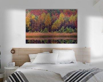 bomen in herfsttooi sur Ronald Jansen