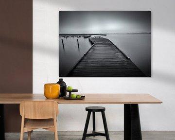 Schildmeer van Arjen Dijk