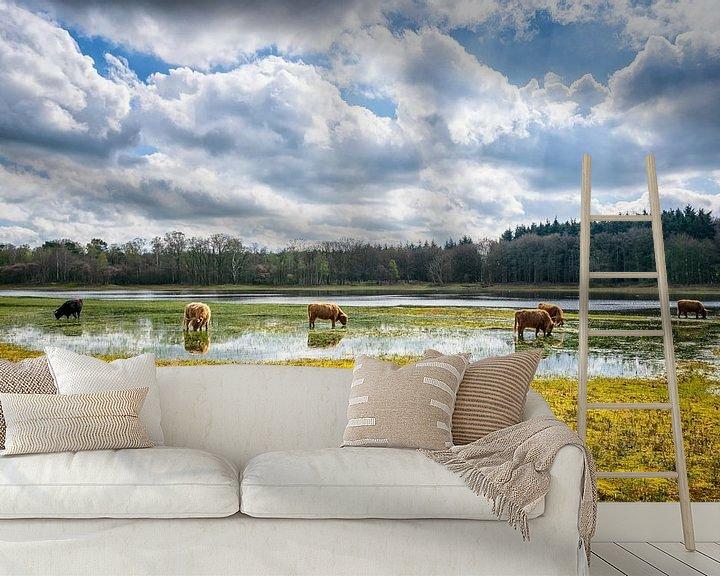 Sfeerimpressie behang: Een kudde schotse hooglanders... van Pascal Raymond Dorland