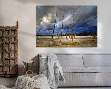 Yellowstone van Peter Bongers