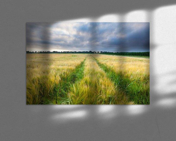 Sfeerimpressie: Klaar voor de oogst van Ron Buist