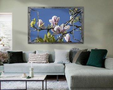 Venster uitzicht - magnolia van Christine Nöhmeier