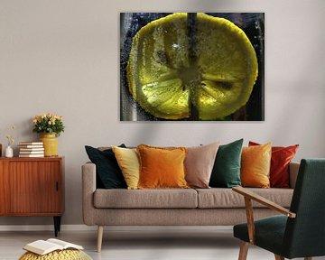 Zitronenscheibe von Christine Nöhmeier