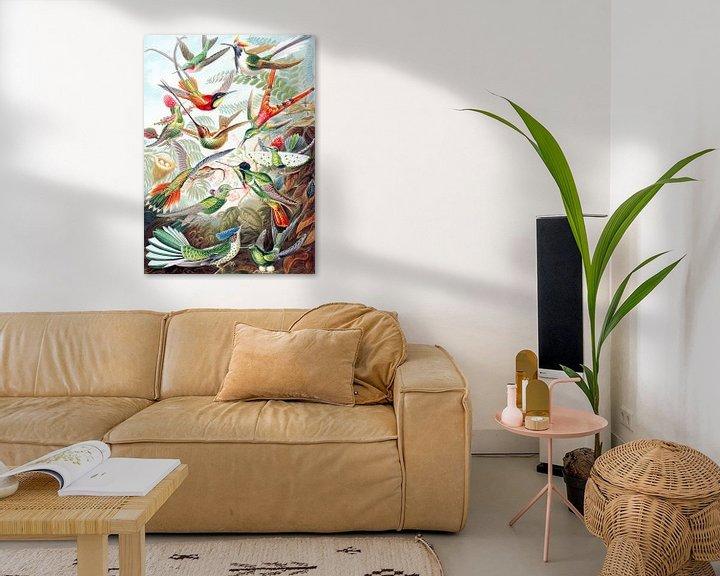 Sfeerimpressie: Hummingbirds van Jacky Gerritsen
