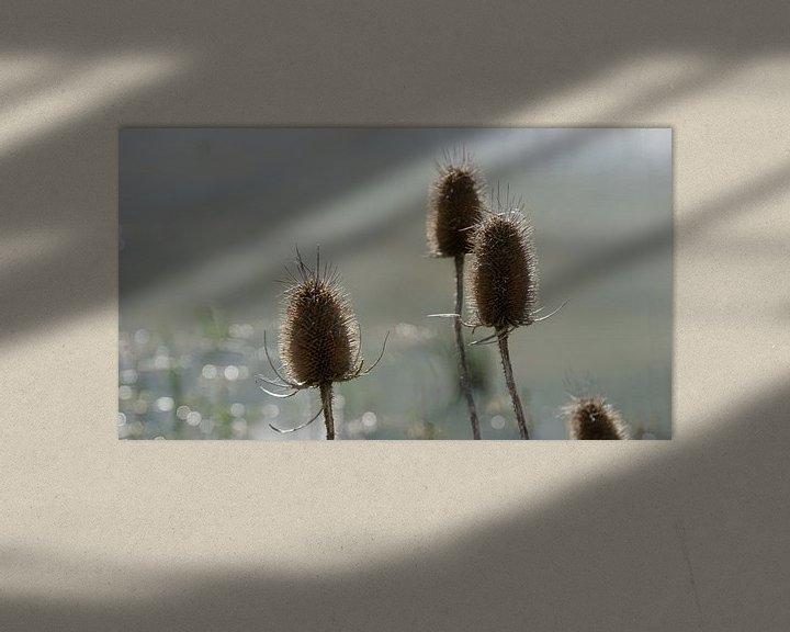 Sfeerimpressie: Zeddam -- Montferland van Montferland Fotografie