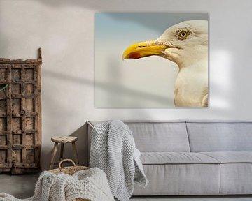 Portret van de meeuw von Mees van den Ekart