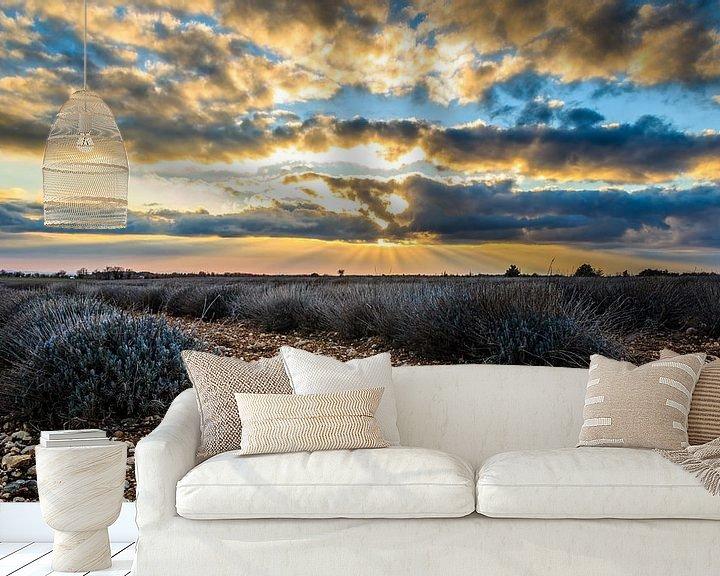 Beispiel fototapete: Lavender Rocks ! von Marcel de Groot