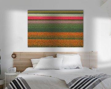 Abstracte lijnen in het tulpenveld van Tiny Hoving-Brands