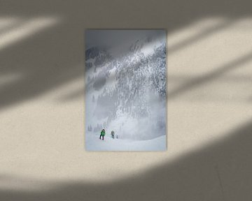 Alpine Winter von menno visser