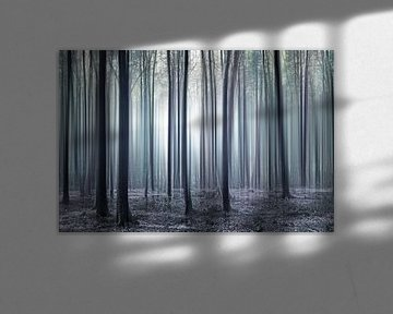 Betoverd bos van Violetta Honkisz