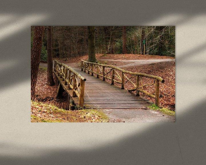 Sfeerimpressie: Zeisterbos met houten brug van Jaap Mulder